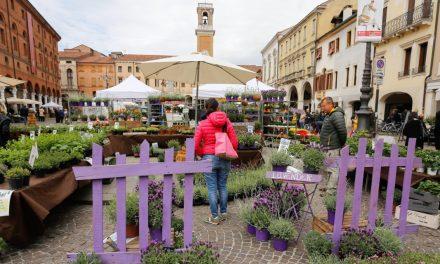 Benvenuta primavera, Rovigo 3 al 5 Aprile 2020