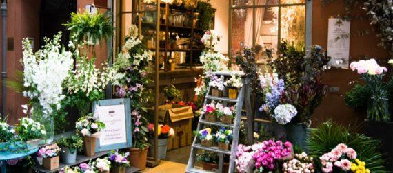 Vendita al dettaglio di fiori e piante: per il Prefetto si può aprire